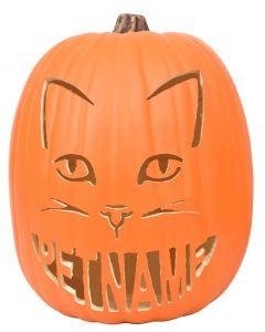 Cat-O Custom Pumpkin