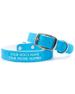 Baby Blue Dog Collar
