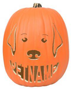 Dog-O Custom Pumpkin