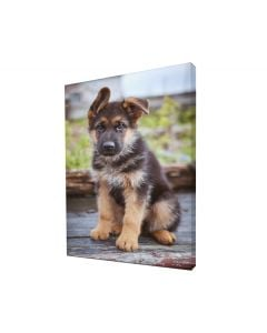 Standard Bar Canvas Prints